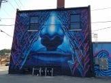 wall grafitti in downtown Dubuque